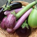 How Many Calories Are In Eggplant?